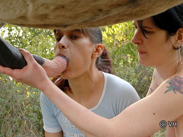 Une bonne porno zoophilie